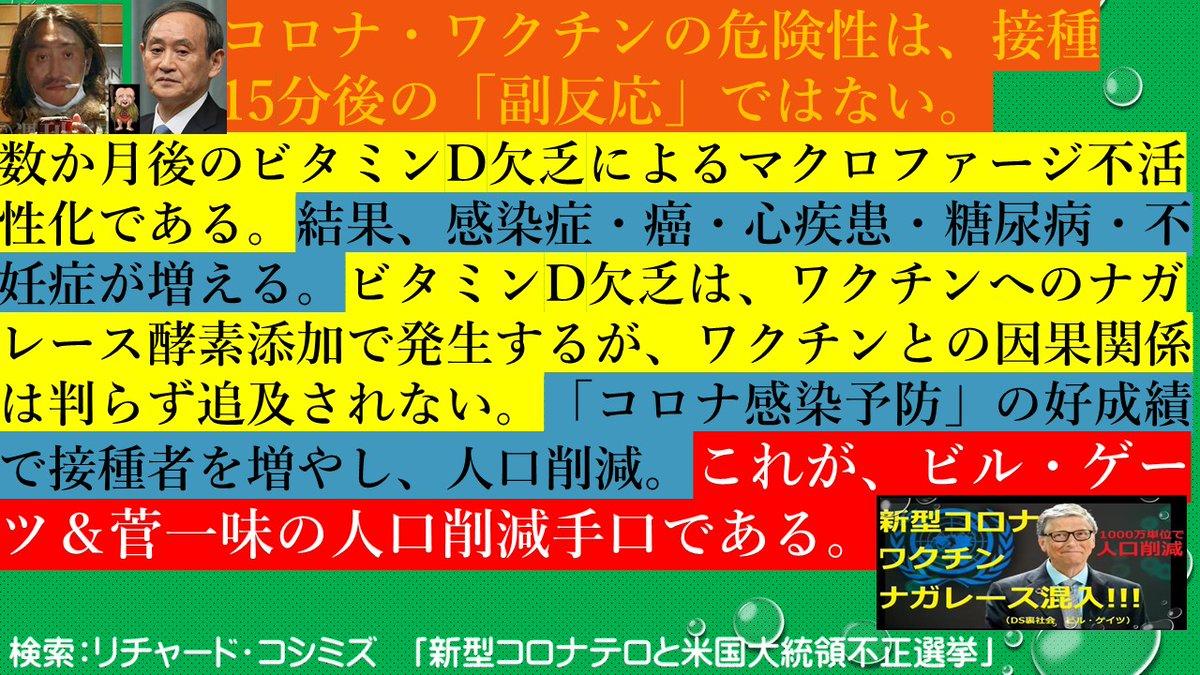 nish_kmiyoshi photo