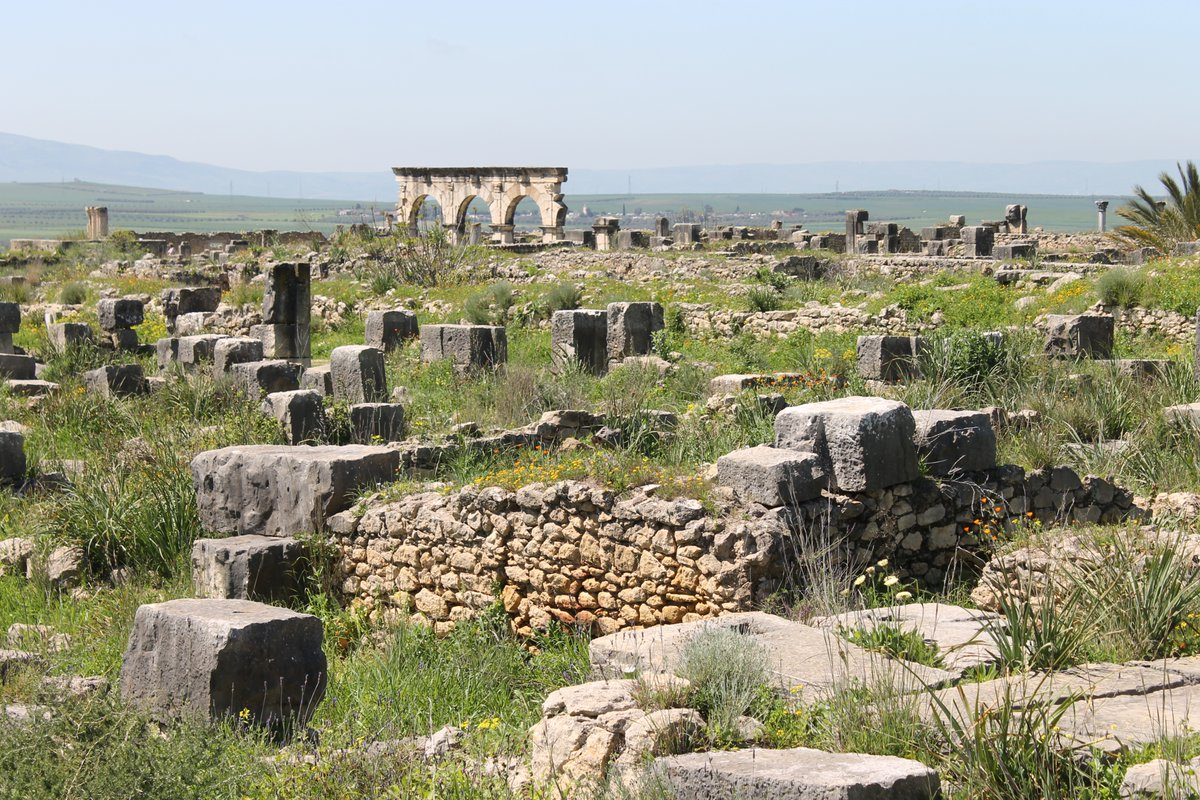 The ruin field of Roman #Volubilis in #Morocco. 🇲🇦 @ColorfulMorocco @magical_morocco @archaeologymag #archeology #ww #tt #ttot #lp #rt #travel #gaytravel @ILoveLGBTTravel @igaytravelguide #iglta #travelmassive #CanonFavPic #ruins #traveladdict #traveltuesday #traveltribe