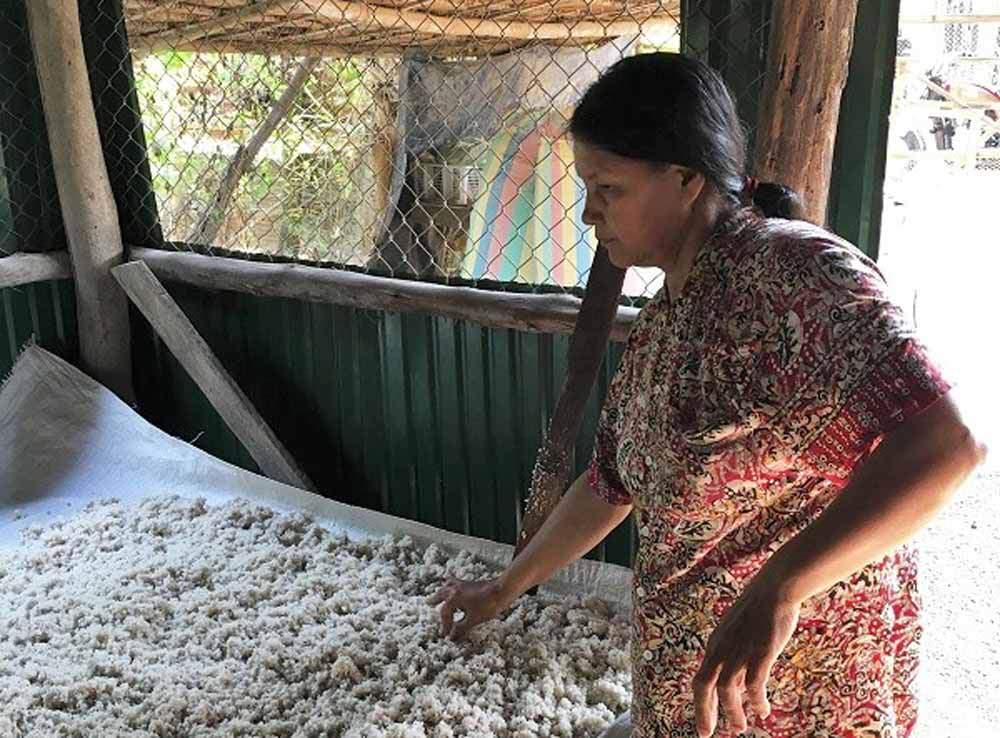 Rice Paper Production in Spring Road     #travel #lookatourworld #travelbloging #travelbloggers #Cambodia #Environmental #Food #FoodProduction #FreshFood #Handmade #Homemade #Nature #PlacesToSee #SangkerRiver #Sustainability #ThingsToDo #Village