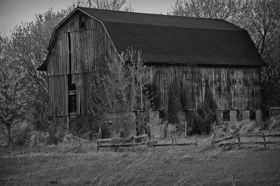 Black and White Rustic Barn Close Up by Aimee L Maher ALM GALLERY  Choose from #framed, #canvas, #metal and more. Also available on various #homedecor items as well as essential #lifestyle #accessories. SHOP NOW!! @lovenature26 #wallart #barn #blackandwhite