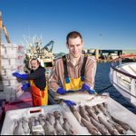 Image for the Tweet beginning: #ScottishSeafood provides a valuable, high