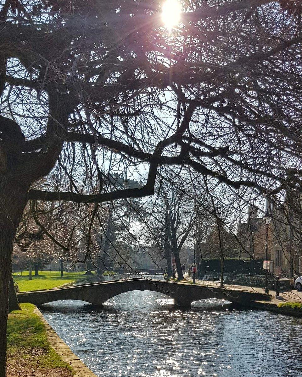 #spring #blossom #flowers #beautiful #season #seasons #springtime #color #ilovespring #warm #sunny #sun #tree #pretty #TFLers #trees #flower #bloom #colorful #warm #nice #beautiful