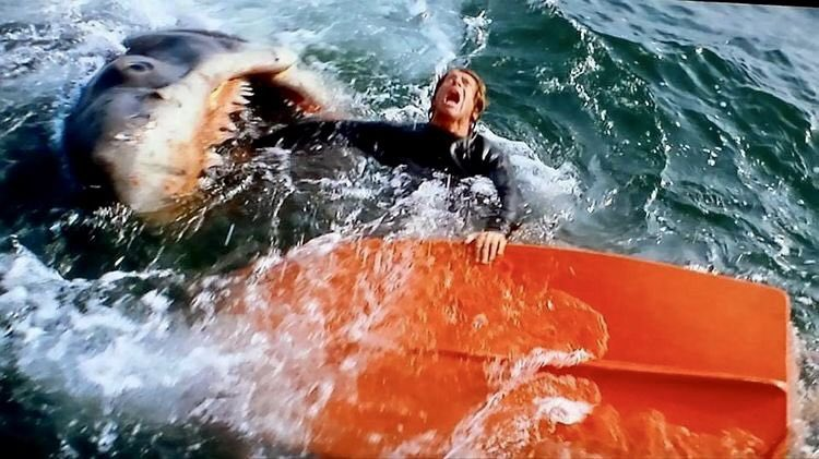 Happy #Chewsday!   #jaws