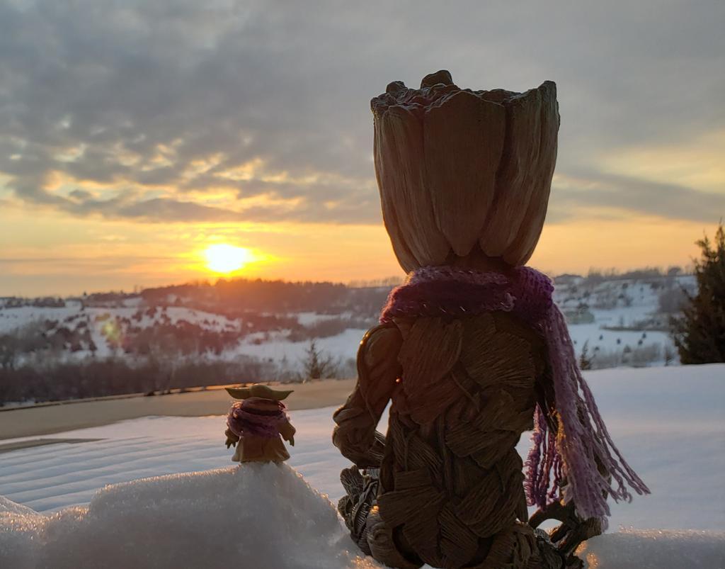 I am Groot.   #ThatWasAGoodDay  #groot#babygroot#iamgroot#wearegroot#twig#guardians#guardiansofthegalaxy#guardiansofthegalaxyvol2#gotg#gotg2#marvel#disney#stickpic #instagroot #wearegroot🌱 #BabyYoda #TheChild #Grogu #WinterSunset #Sunset #snow