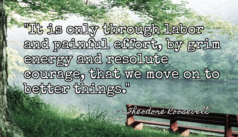 It is only through labor and painful effort, by grim energy ... #Moving On #Courage  #TuesdayMotivation