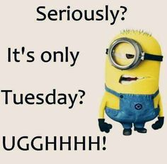 🤣😊🙃😝😇 #DailyFunny #TuesdayTreat #TuesdayThought #TuesdayMorning #DailyMemes #SmileMore #SMILE #HaHa #LAUGH #HappinessEverywhere #LOL #Laughter #ChooseHappiness #FunniestTweets @DailyMemesPlug @DailyFunnyStuff @DailyFunnyTimes @ReasonsSmiIe @actionhappiness @JokesMemesFacts😂