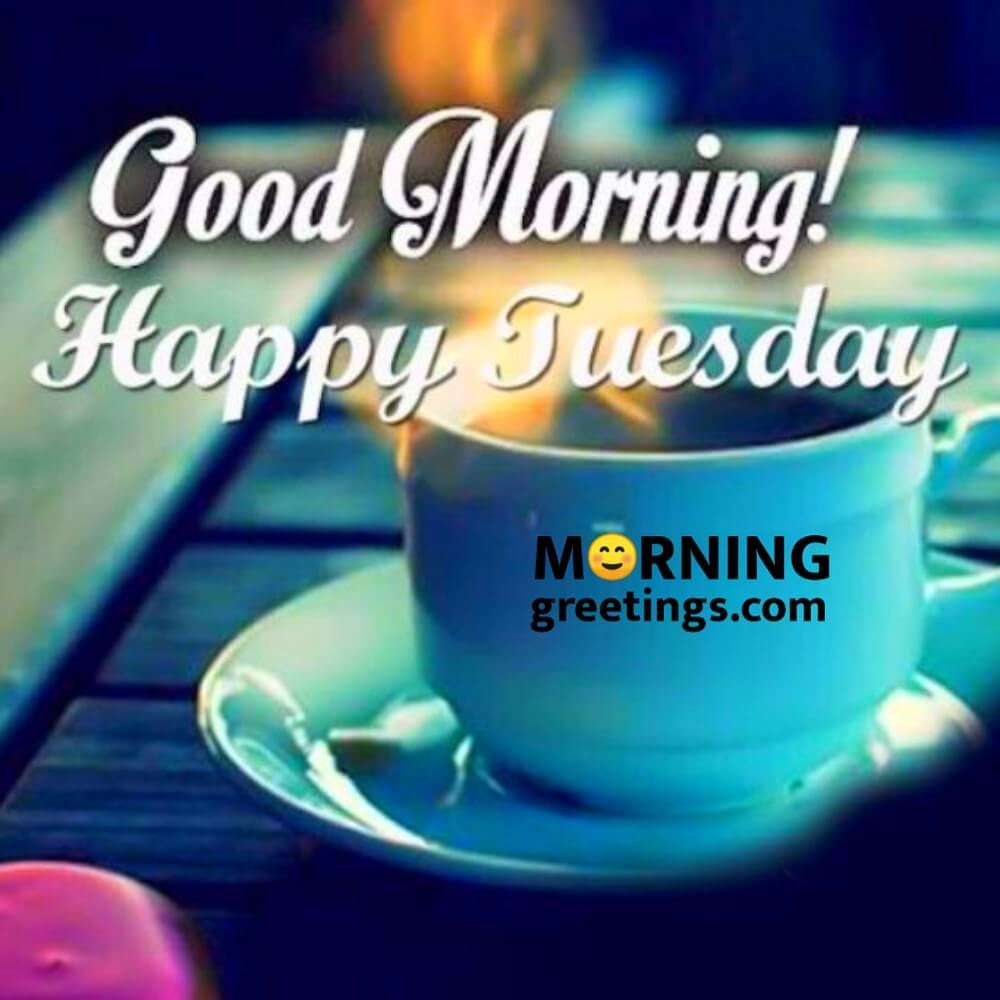 Good Morning All; Sending many Blessings, Have a terrific Tuesday!  #love  #goodmorning #tweegram #oraclereadings #tuesdaymorning #greetings #sun #morning #riseandshine #memeoftheday #coffee #instadaily #cbdoil #motavation #tuesdaythoughts #tuesday #universehasyourback 🙏🏼❤️