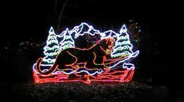 Family Travel: Zoo Lights (Denver Zoo)  #Travel #TravelVideo #Vacation #VacationVideo #TravelPics #Photography #Christmas #holidays #Colorado #Denver #Zoo #DenverZoo #TravelTuesday