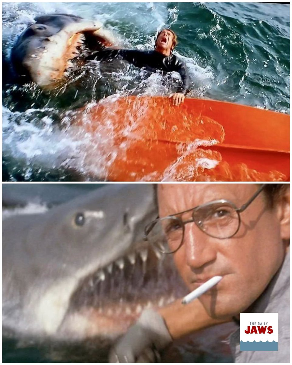 Time to settle it.... when we do first (properly) see the shark in #JAWS?   #FilmTwitter #Films #Movies