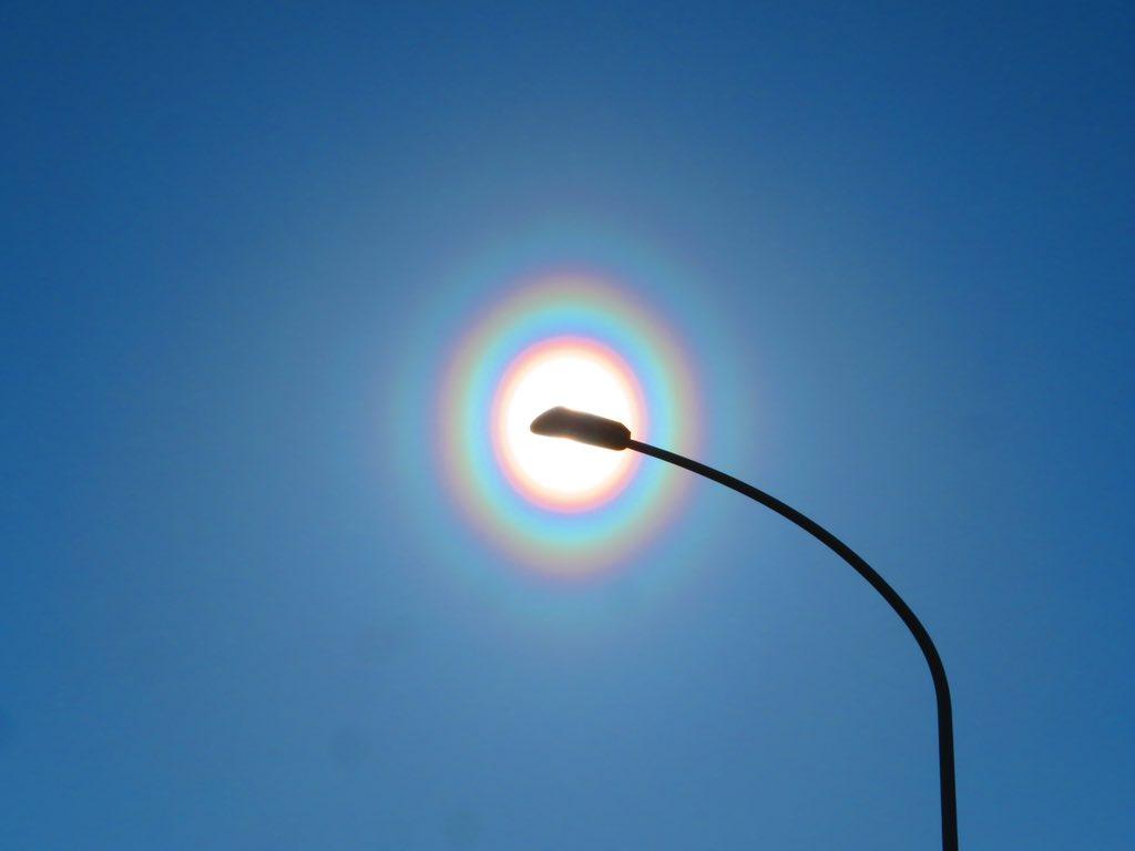 この季節は辛い!肉眼でも確認できる場合がある花粉光環という現象が多発している模様!