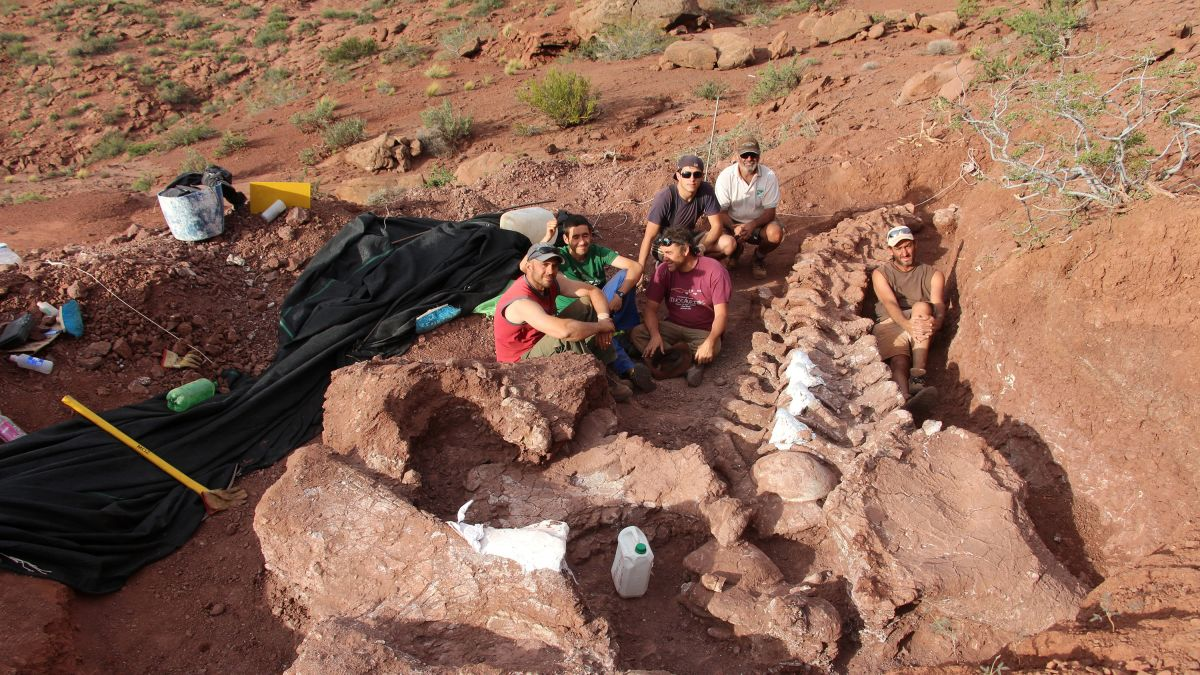 A huge ninja dinosaur fossil found in Argentina that lived 140 million years ago   #science #Argentina #fossil #dinosaur #news