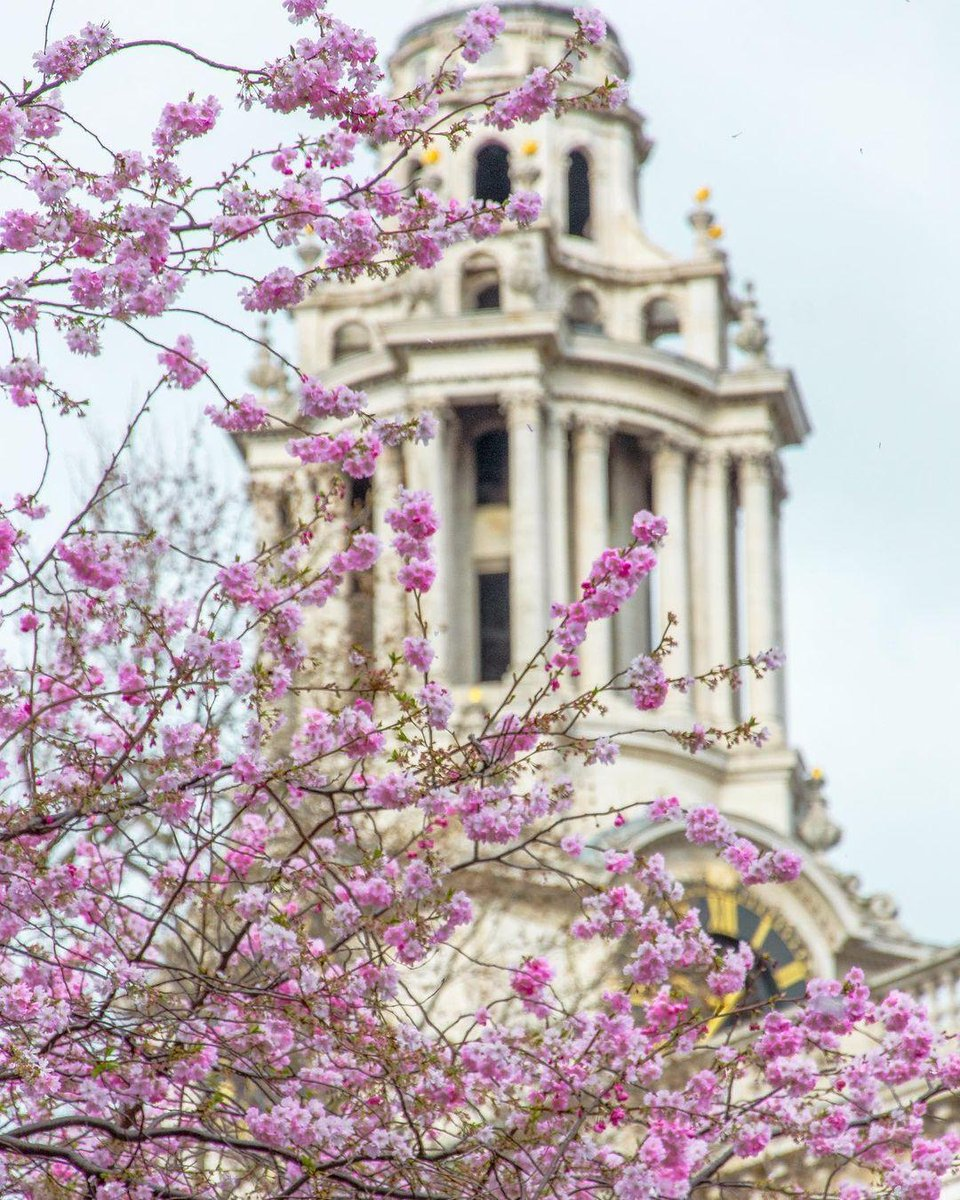Bloom baby, bloom 🌸🌸 After such a gloomy year, we all need some colour in our life.   📍St. Paul's Cathedral  IG 📸 @lundonlens  #VisitLondon #Travel #LuxuryTravel #Trending #Trend #viral #London #England #spring Reposted from @visitlondon