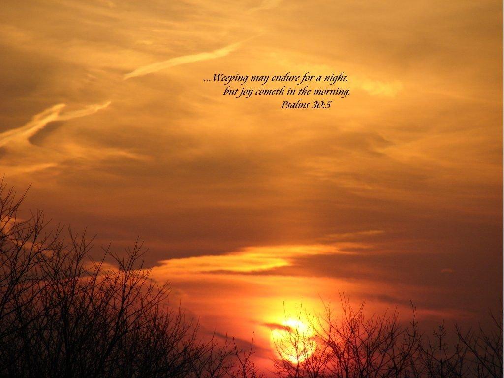 Weeping may endure through tonight, but tomorrow is a new day.#theflashmovie #queensugar #COVIDIOT #Illini #ArtsOfVibrancy #love #God #jesus #truth #believe #Samson #holygroundtoday #blessed #joy #peace #mercy #grace #thankful #bible #scripture #speaklife #seekGod #Godchaser