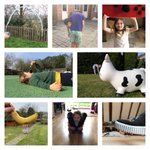 Image for the Tweet beginning: Year Two @RGSTheGrange have been