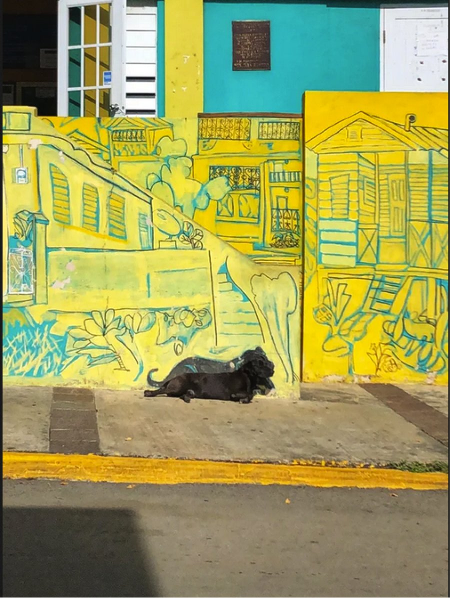 """""""Locals in Puerto Rico paint a mural which includes a dog that lounges in the area."""" r/awww #Trending #Texas #COVID19 #VoteHimOut #dogs #dogsoftwitter #WeAreTheValley #Calum #Dudley #TaylorsVersion #ArtsOfVibrancy #boycottwendys #PENTAGON"""