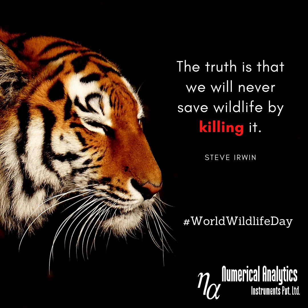"""The truth is that we will never save wildlife by killing it."" - #steveirwin #WorldWildlifeDay  . . . . . . . . #WorldWildlifeDay2021 #wednesdaythought #motivation #life #studyabroad #JNTata #wildlife #Wildlifeday #WWF"
