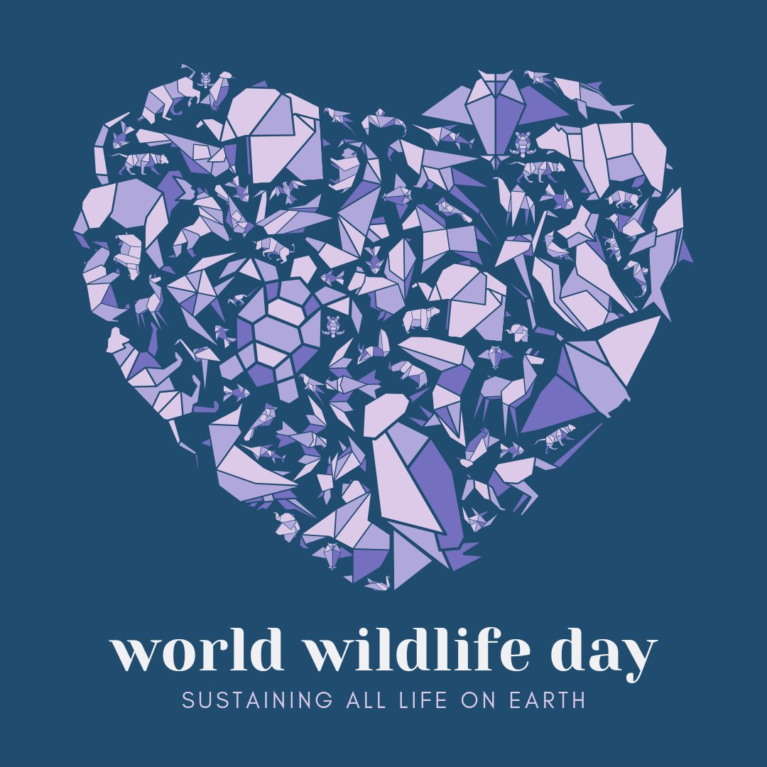 Happy World Wildlife Day!  World Wildlife Day is celebrated annually on the 3rd of March in support of animals and plants across the world. For 2021, the theme is 'Forests and Livelihoods: Sustaining People and Planet'.  #WorldWildlifeDay #ForestsAndLivelihoods