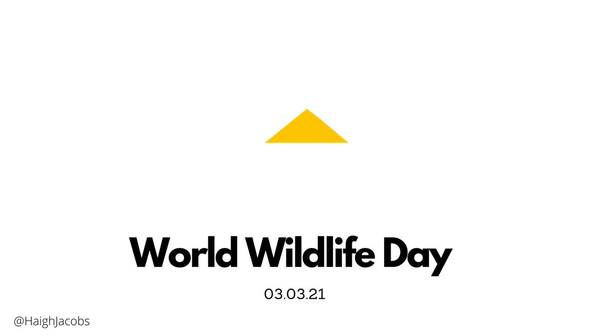 Hey @CaterpillarInc   Today is #WorldWildlifeDay and I want you to join hundreds of brands to highlight the importance of nature by removing the Caterpillar from your logo.  A #WorldWithoutNature is a world that's incomplete.  Will you show your support?  @WWF @OneMinuteBriefs