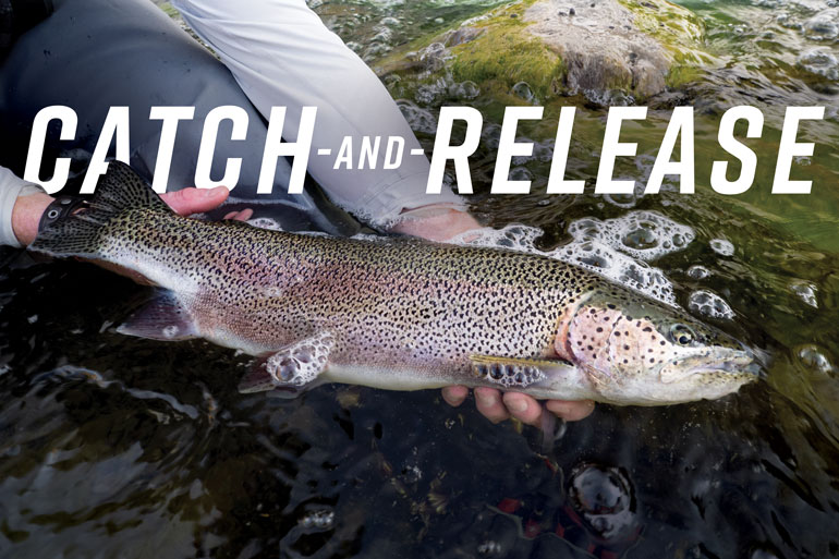 Do you practice catch and release? Here are the best practices for catch-and-release trout fishing via @flyfishingmag:   #IAMSPORTSMAN #catchandrelease #fish #fishing #trout #troutfishing #bestpractices