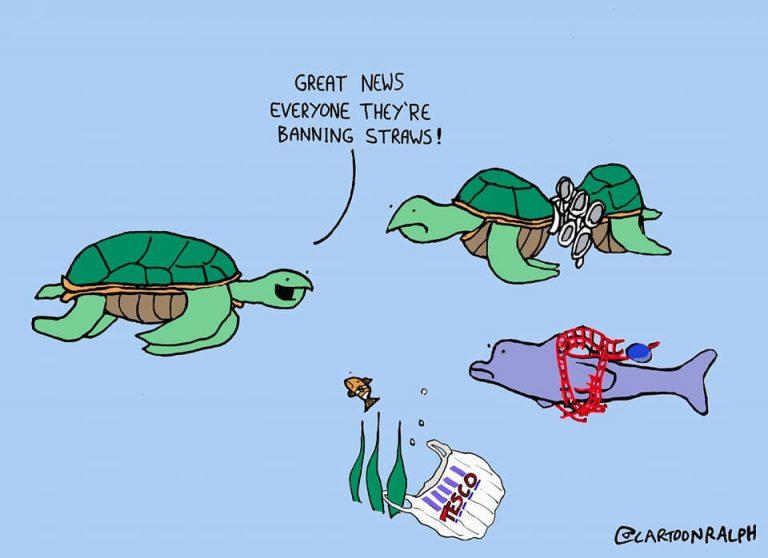 #WorldWildlifeDay #plasticpollution