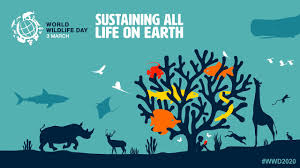 """It's #WorldWildlifeDay & this year's theme is """"Forests & livelihoods: sustaining people & planet."""" Over 1M species are on track for extinction in the next decades. Here are ways to take action & celebrate today with the kids in your life:  #wwd2021 #care"""