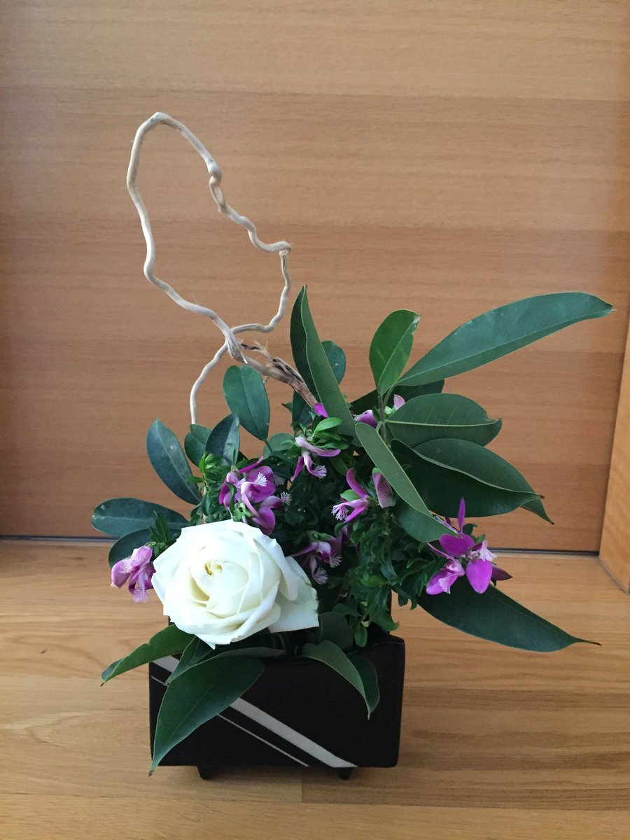 Another attempt at #Ikebana.  What do you think?  🌷 @lifeofwomen   #flowers #beauty #roses #flowerphotography #women