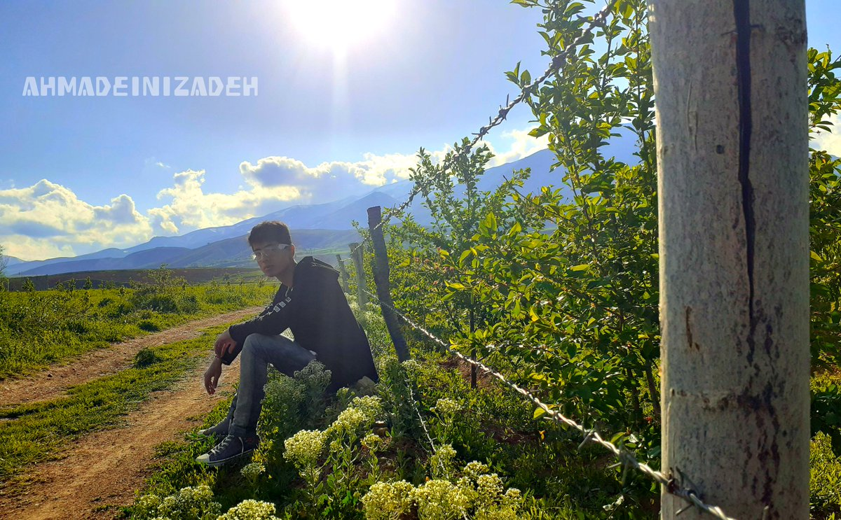 In beautiful, dreamy and pleasant nature #ahmadeinizadeh #ibodi #beauty #beautiful #nature #flowers #ps5 #news #new #top #instagram #today #photooftheday