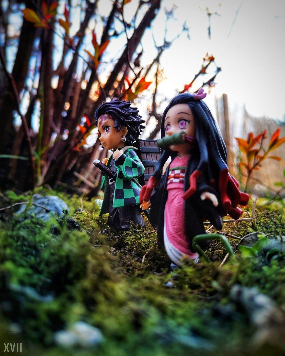 Je me baladais et je croise ces deux là ❤️❤️   #Tanjiro #nezuko #DemonSlayer #kimetsunoyaiba #DemonSlayerKimetsuNoYaiba #Anime #toyphotogallery #toyphoto #toys #toysaremydrug #toycommunity #artphoto #figurine #otaku #Nature  Hésite pas à partager ❤️