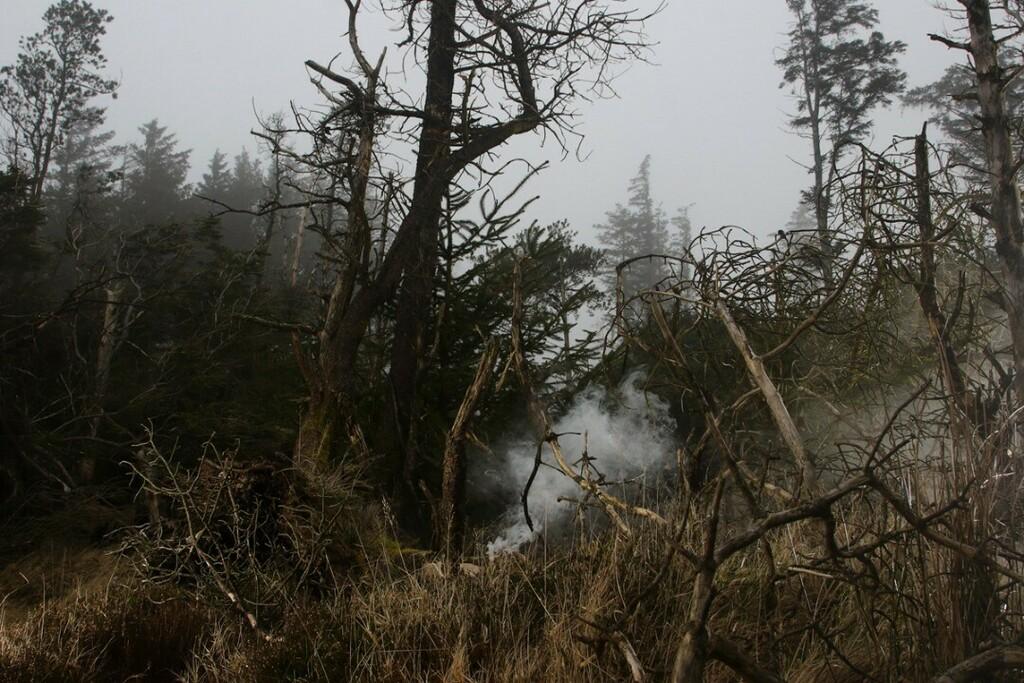 Smokescape #landsape #art #photo #photography #instadaily #instagram #eyeshotmag #foam #warphoto by Gary Somers