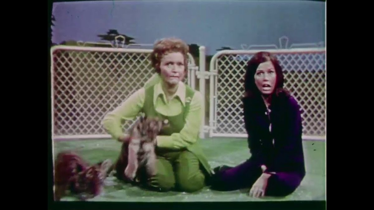 Betty White's 1971 talkshow series The Pet Set, created by and starring the beloved performer along with her celebrity pals and their pets, has arrived on digital platforms and DVD this week! Available from MPI!  #BettyWhite #ThePetSet