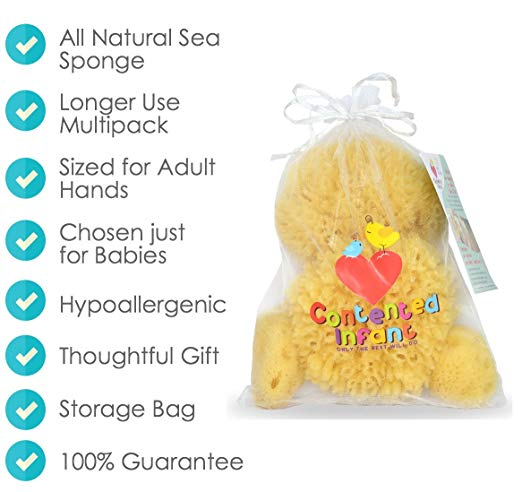 Natural Sea Sponges for Newborn, Baby & Toddler Bath 4 pack #contentedinfant #naturalsponge #seasponge #baby #newborn #toddler  Check the Baby Sponge here