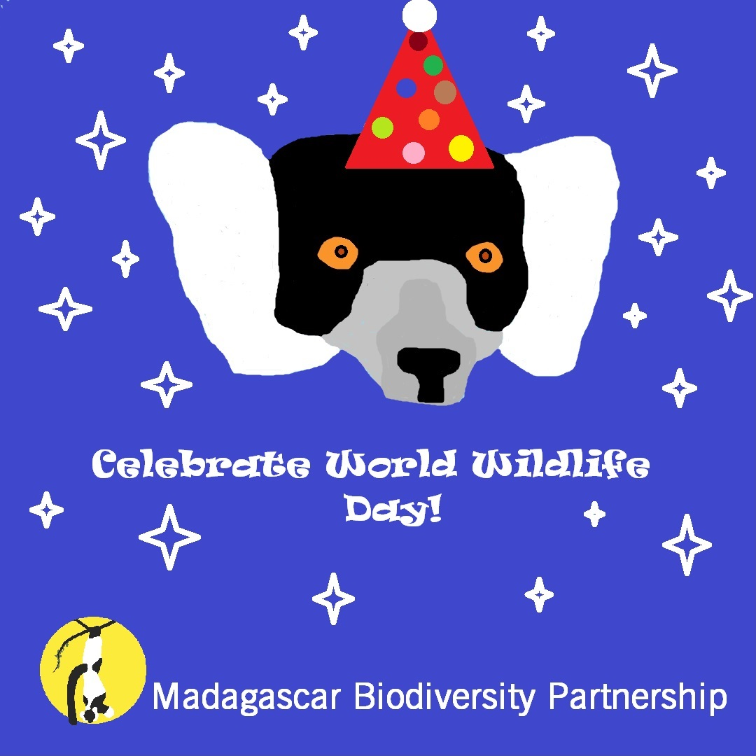 Today is a day for celebration of our local wildlife! Stay tuned for how we celebrated #WorldWildlifeDay in Madagascar!