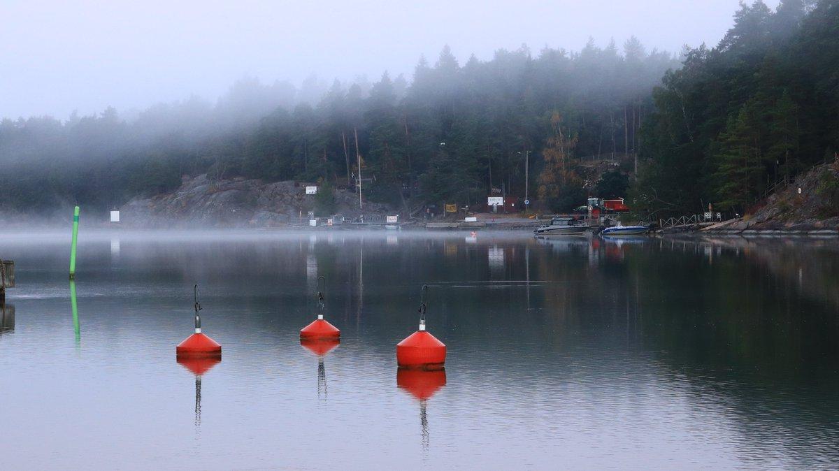 Tarinakartan kautta löytyy useita luontokohteita myös seuraaville viikoille. Etäisyydet on helppo säilyttää varsinkin uimarannoilla 😎