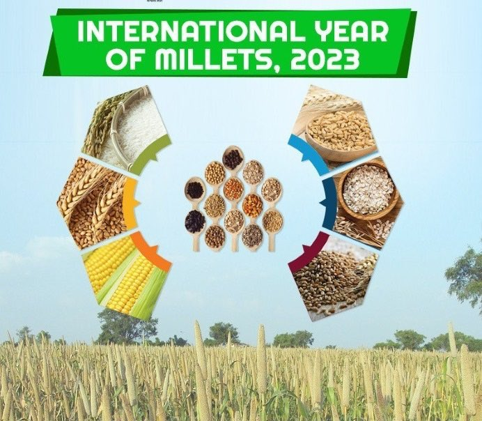 Gratitude to all the nations who initiated and co-sponsored the resolution on International Year of Millets at the @UN. Distinguished delegates were also served delicious Millet Murukku! This is one snack I also relish and urge all of you to try it as well.
