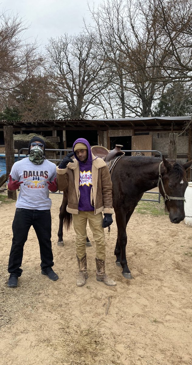 Cowboy business 🐎🤠   @audemar_2_dope horse training   #DallasTexas #horses #training