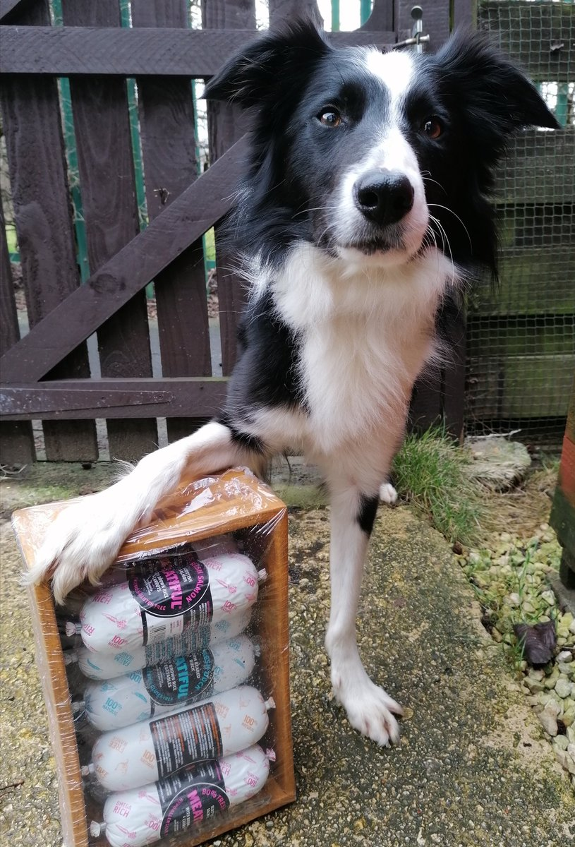 We won a competition for #NationalLoveYourPetDay our prize from Meatiful has arrived
