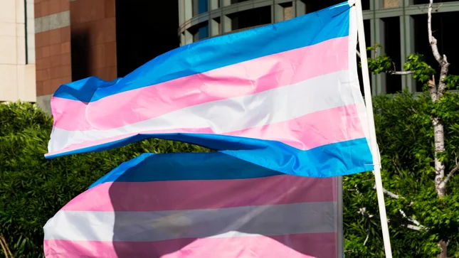 Alabama state senators approve ban on hormone therapy, surgery for transgender youth https://t.co/F3CL94iZs0 https://t.co/73yMfQd79r