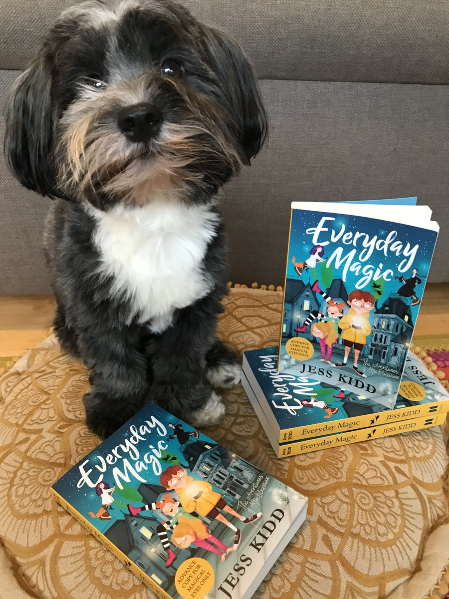 Happy #WorldBookDay! Wilco is guarding this pile (he'd let you have them all) we hope you've got your paws on some fabulous stories.