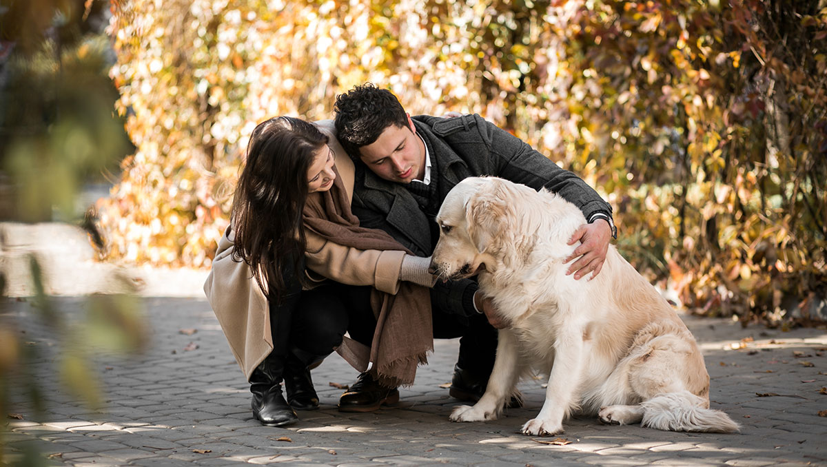 Pasear con perros te ayuda a evitar la #obesidad, entre otros muchos beneficios. El Dr. @RomanTurro, te explica el porqué 👉 https://t.co/MZZ2graDrE  #DíaMundialdelaObesidad #WorldObesityDay https://t.co/kXuEOLEc7S
