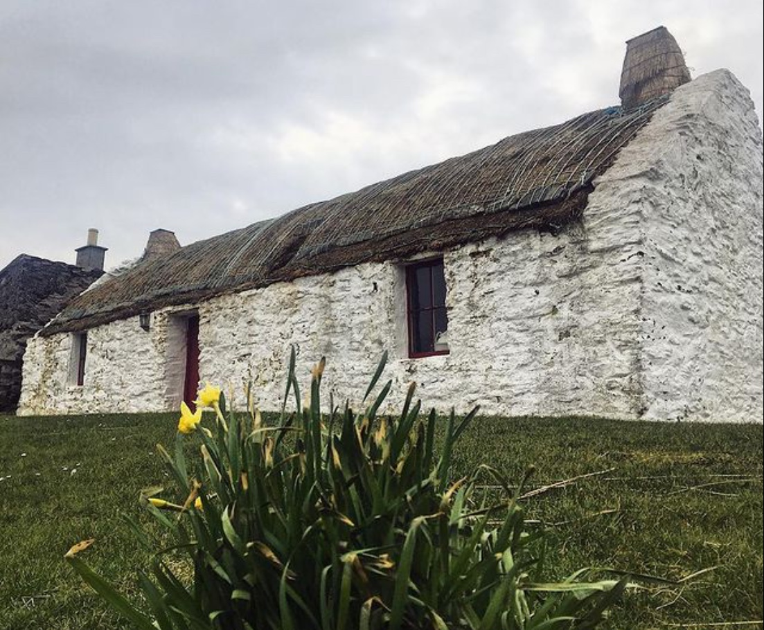 We are feeling really Spring like up here in #Shetland now we are at the end of our first week in #March. Here is our picture of Easthouse #Croft in Burra with #Spring #Daffodils to celebrate the end of the week. Happy weekend everyone!   #fridayfeeling #community #crofthouse
