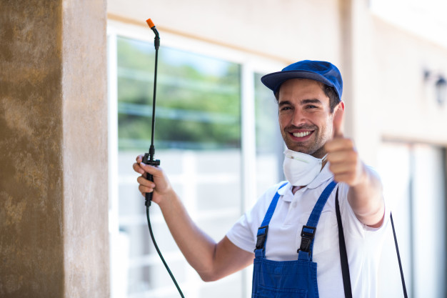 Are you worried about reliable pest control service? DeBishops Pest Control is just a call away. We have more than 20 years of experience in exterminating and preventing insect infestations.  Call 860-628-9751 #pestcontrol #stockmarketcrash #SpaceJam #UMass