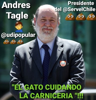 """@Lisancr1 """" El gato ,cuidando la carniceria """"! Ojo con este weo'n cabritos ,se dice que es """" experto electoral """" de la mafiosa @udipopular !💩 Andre's Tagle Dominguez ,es el nuevo director del @ServelChile !🤦♂️ #ChileDesperto #RenunciaPiñera  #PautaLibre #holachilelared  #NuncaMasDerecha"""