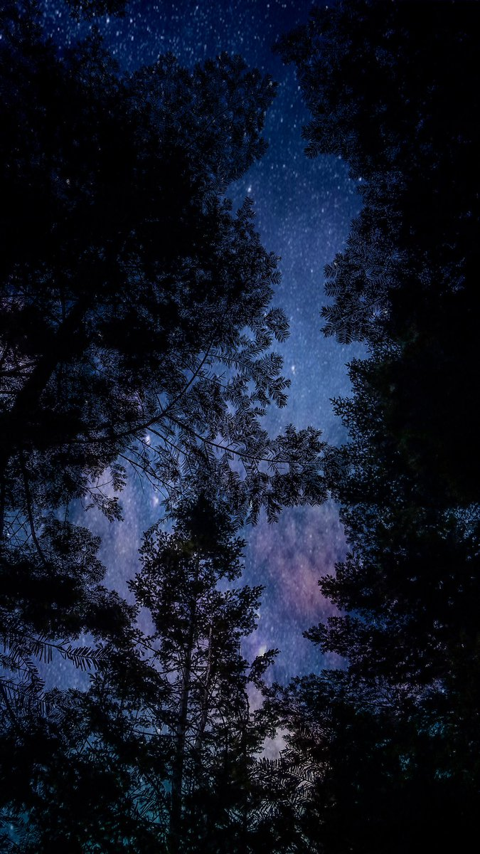 Yes, I took this photo. No, I did not take a photo of the stars and galaxy 🌌 Editing works wonders. #photo #stars #galaxy #edit #wonders #nature #colors #idaho #photography #beauty #sky #trees #view #lookup #winter #path #forest #hike #mountain #friends #trip #weekend #explore