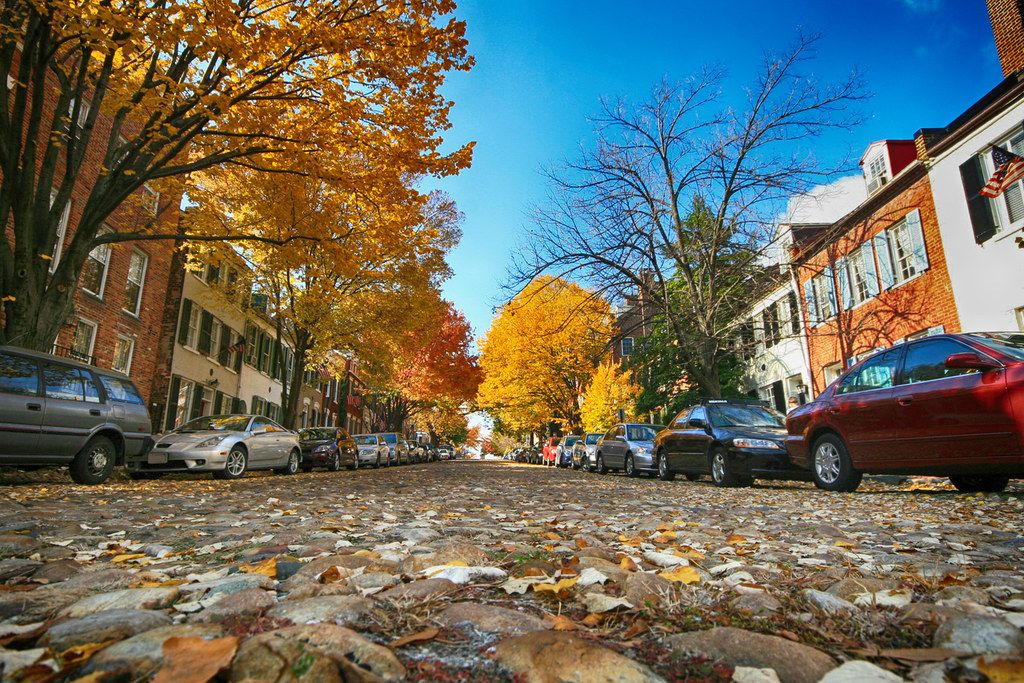Street view of Autumn in Alexandria, Virginia  #photography #travel #alexandria #virginia #autumn #usa #trees