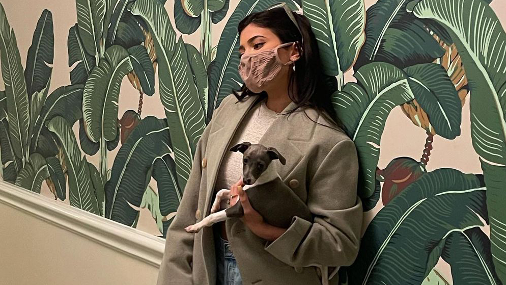 .@KylieJenner in the SKIMS Face Mask — available now in single color packs: 5 for $32, 7 for $44, or 1 for $8.  Shop our super soft and breathable Face Masks: