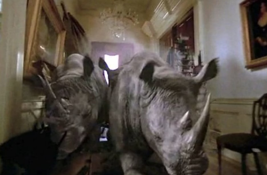@patrickhwillems @thelindsayellis why hear them talk about some eels when they can talk about THESE RHINOS?