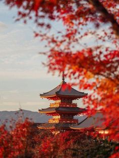 Autumn in Japan - Photography Tips #JapanTravelPictures #japan #autumn #travel #asia #fall