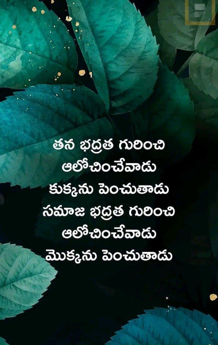 @MPsantoshtrs  #greenindiachallenge 🌱🌱🌱