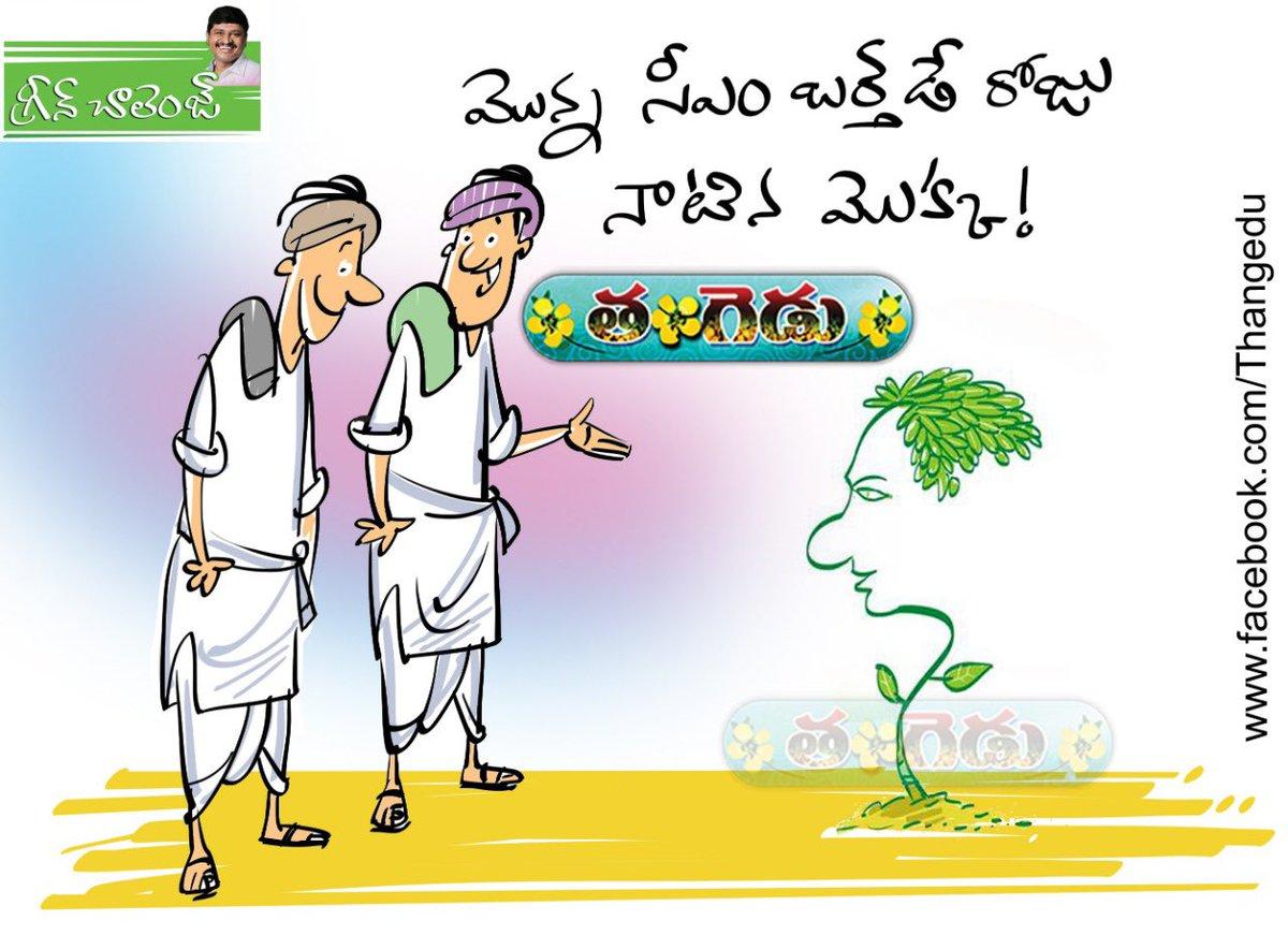 Few more Cartoons by @ThangeduMagazin .