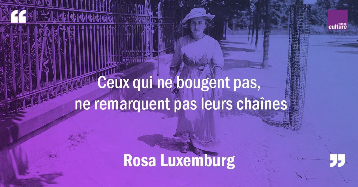 5 mars 1871 : naissance de Rosa Luxemburg. De son militantisme marxiste à son engagement pour la révolution en Allemagne en passant par son goût pour les lettres, retour sur l'histoire et le destin de l'une des grandes icônes politiques du XXe siècle.